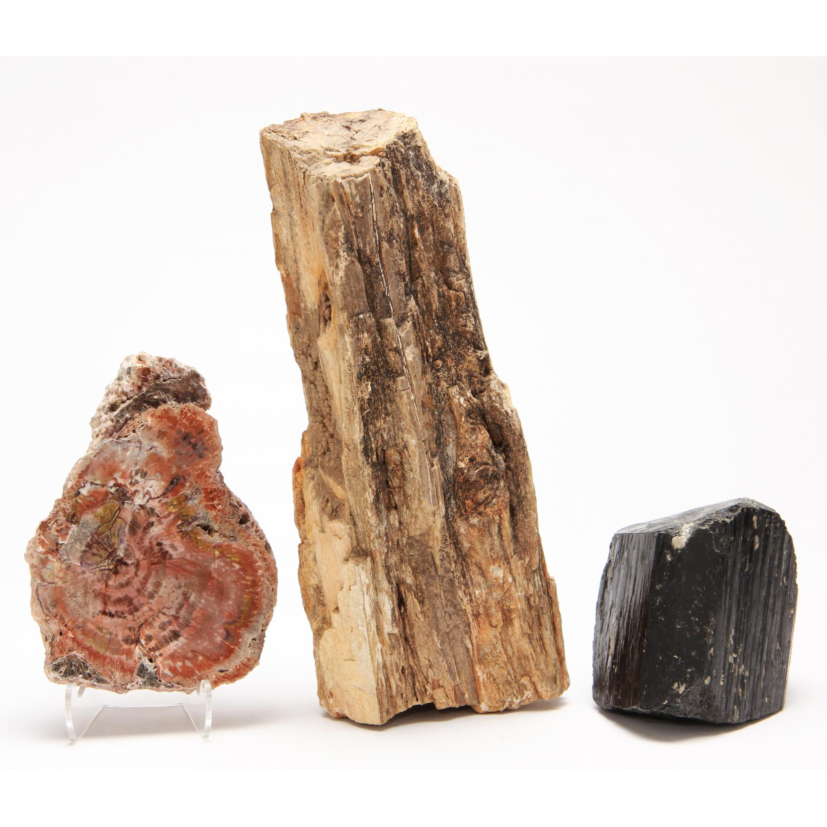 petrified-wood-and-coal-crystal