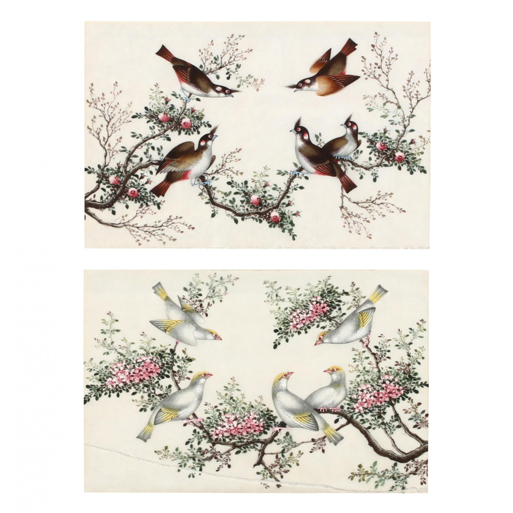 a-pair-of-chinese-bird-and-flower-pith-paintings