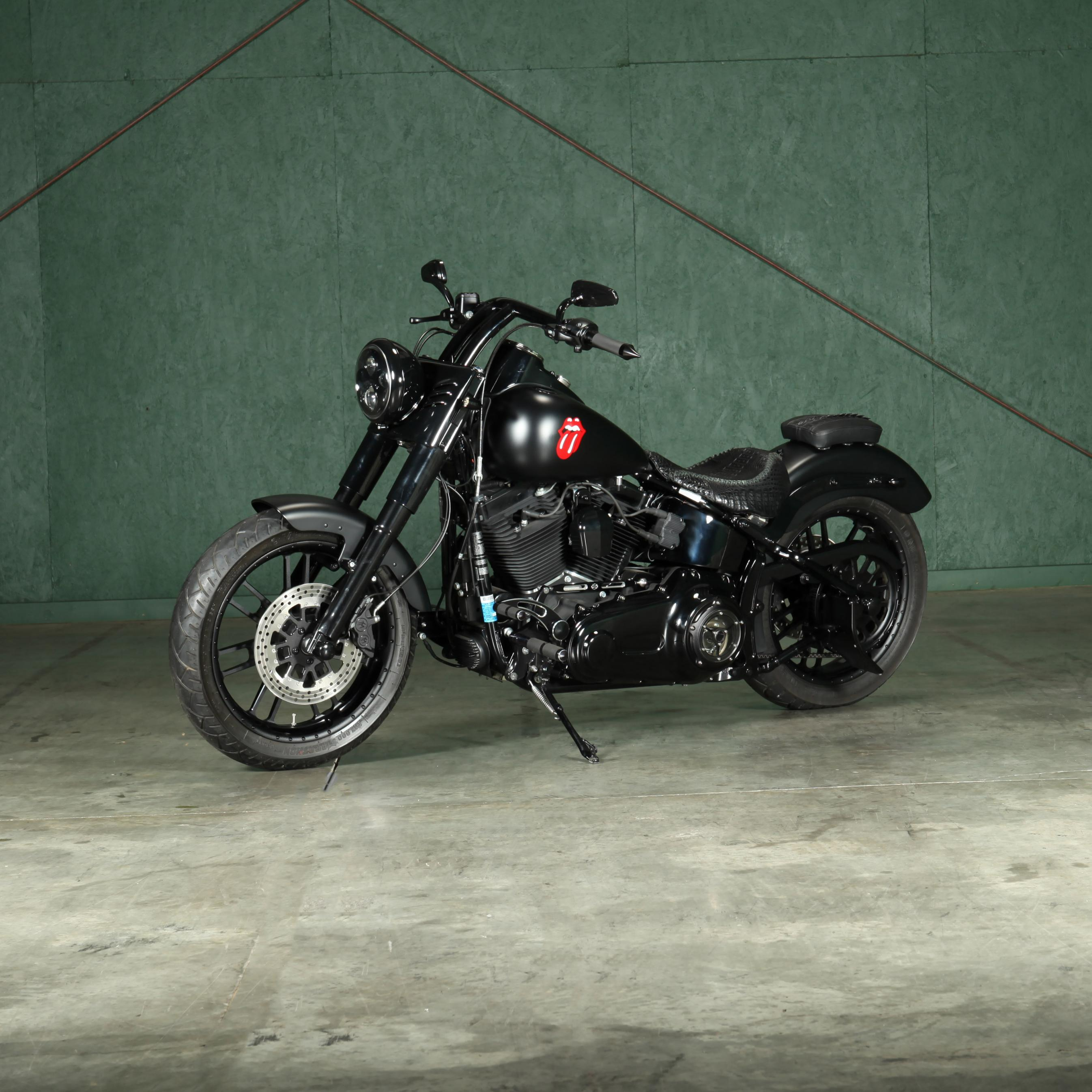 2012-custom-harley-davidson-fls-slim-black-denim-edition-softtail-bobber