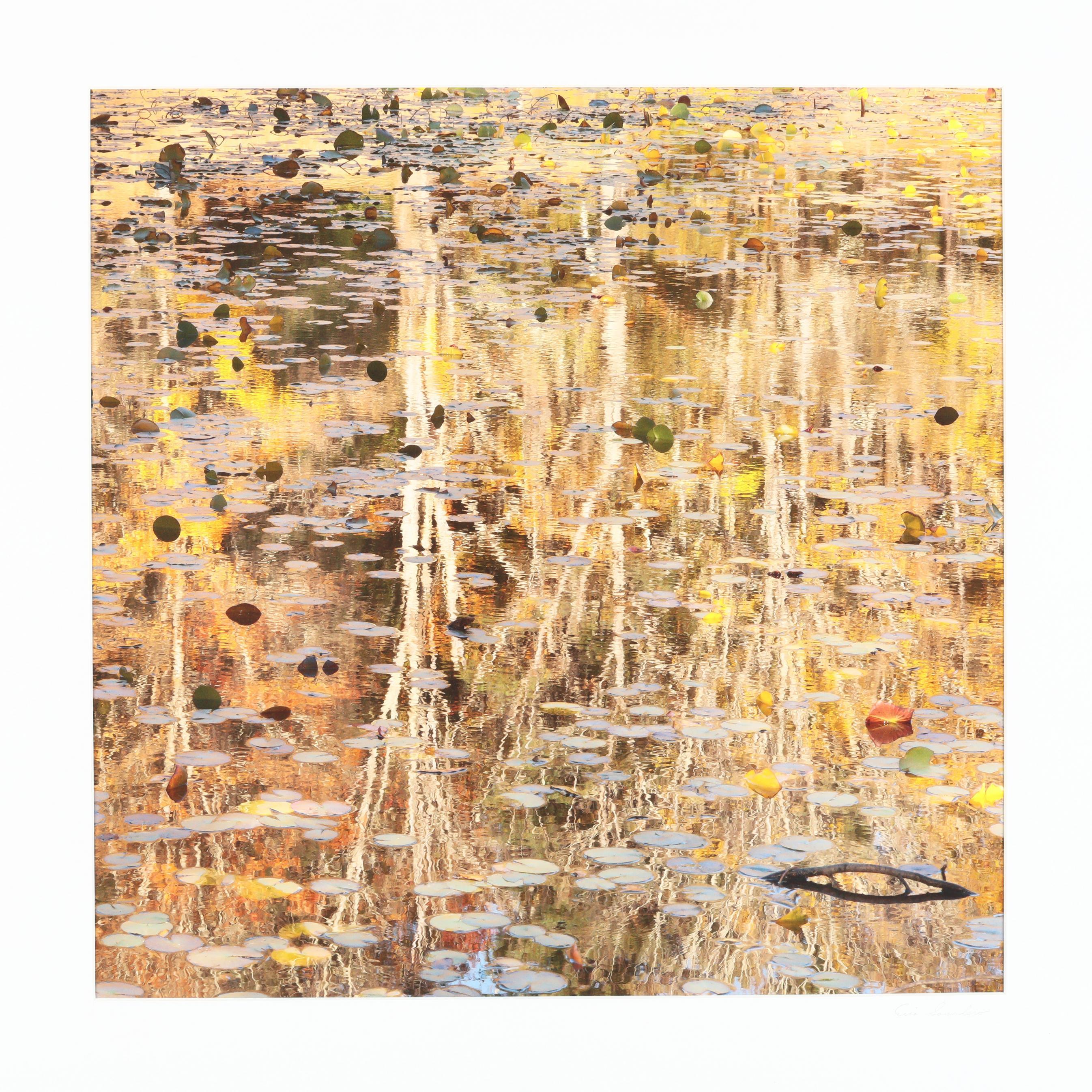 eric-saunders-nc-i-autumn-reflection-v-i