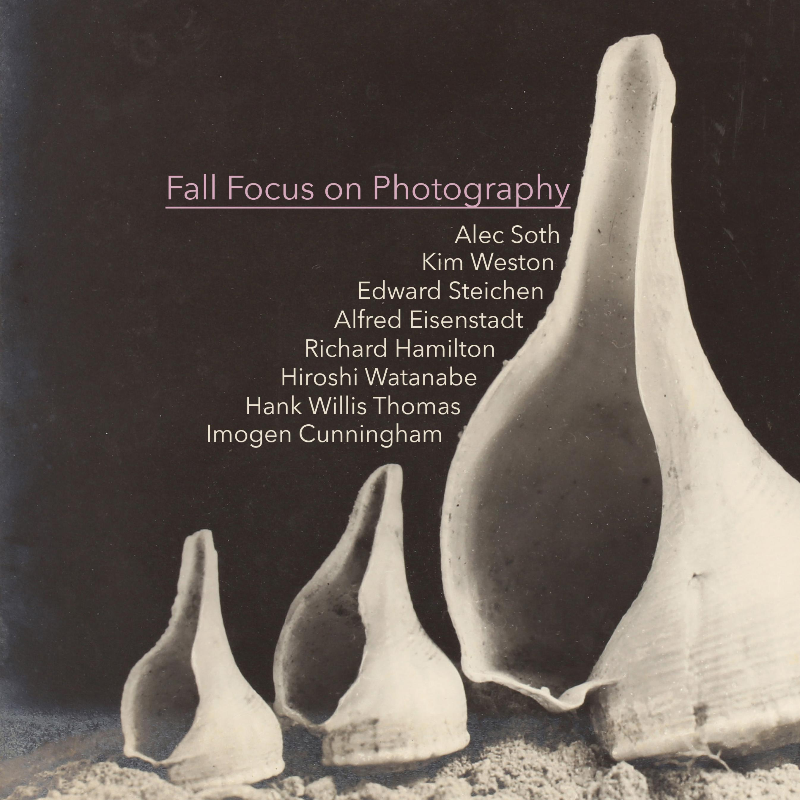 Fall Focus on Photography
