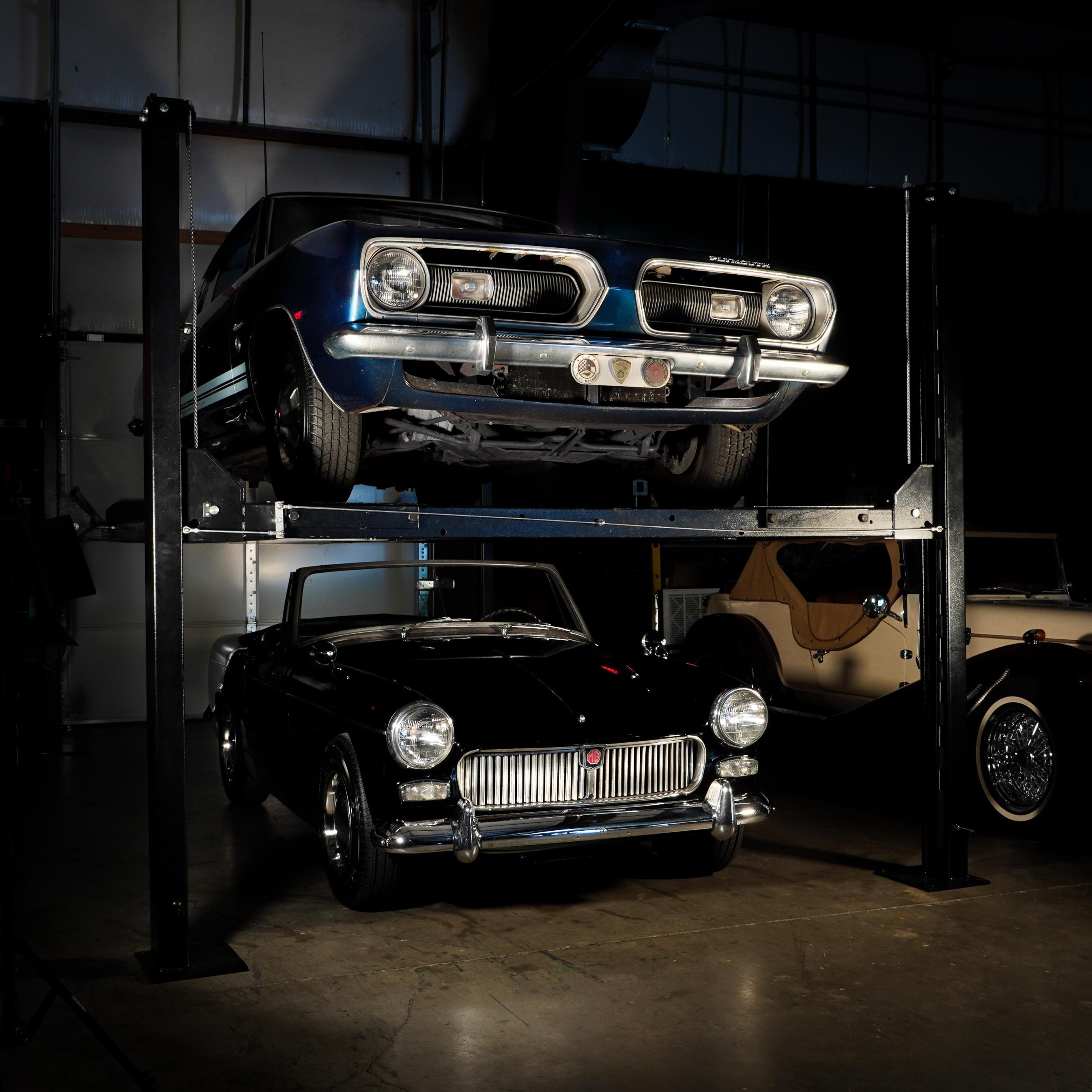Genus: <I>Car collector</I>