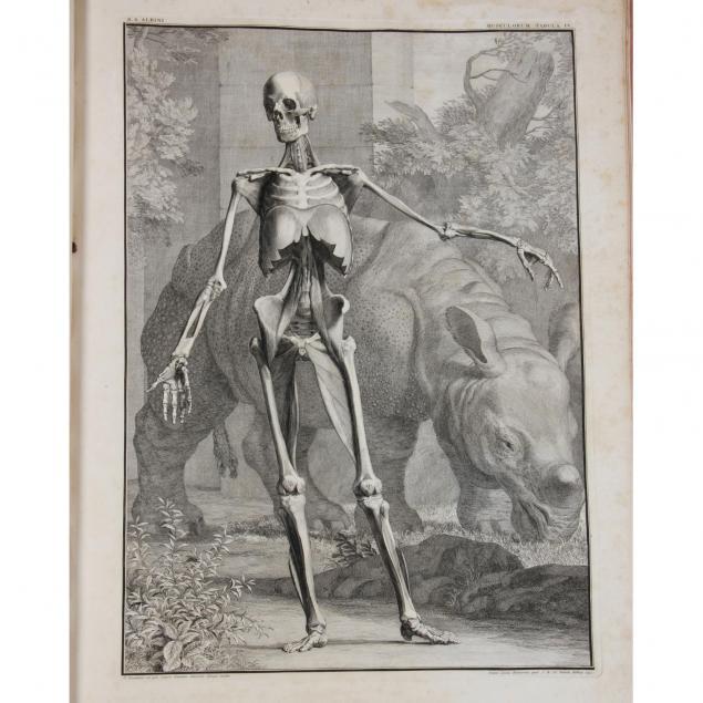 first-edition-of-albinus-and-wandelaar-anatomy