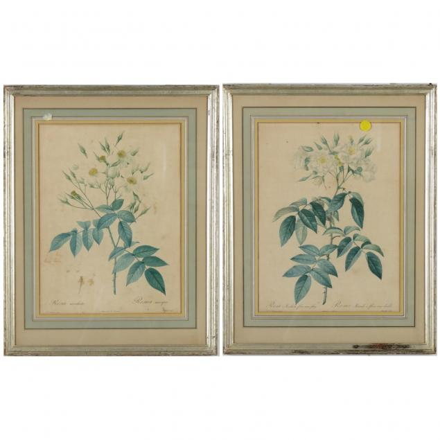 pair-of-botanical-lithographs-after-redoute