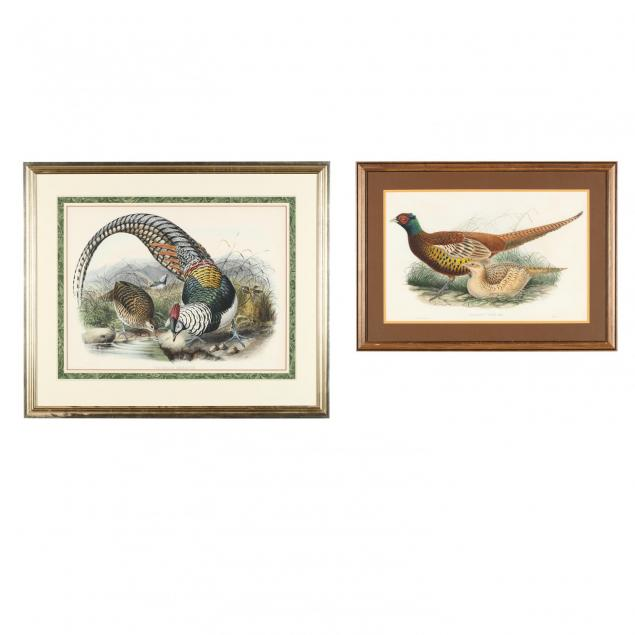 pair-of-framed-hand-colored-ornithological-lithographs-elliot-and-gould