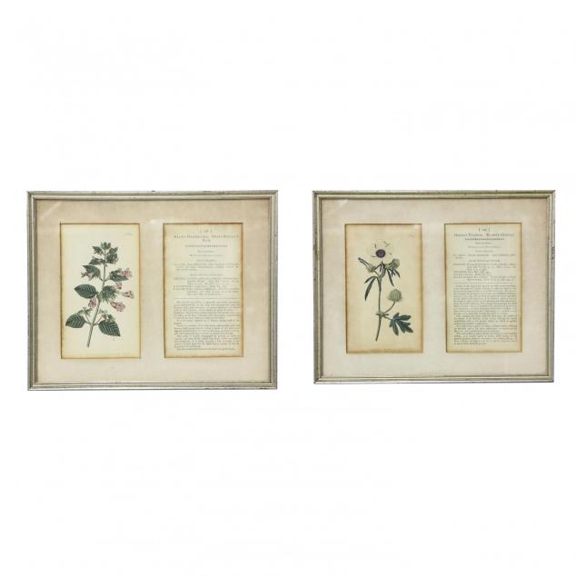 pair-of-framed-floral-bookplate-prints