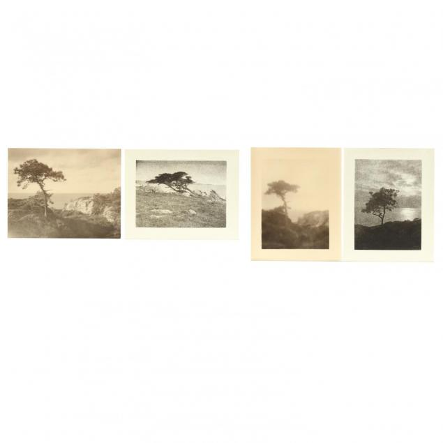 leopold-hugo-american-1863-1933-group-of-4-photographs-picturing-nature