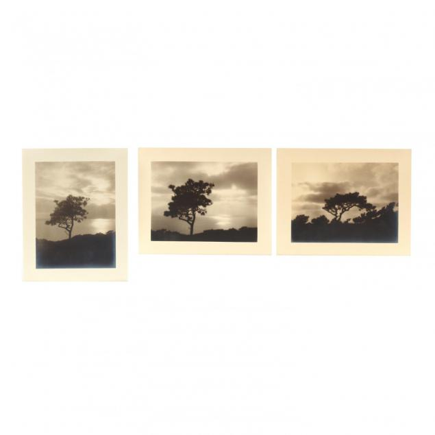 leopold-hugo-american-1863-1933-group-of-3-photographs-picturing-nature