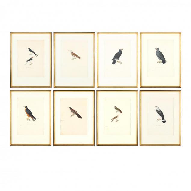 jean-gabriel-pretre-1768-1849-eight-studies-of-birds