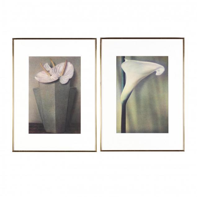 sheila-metzner-american-b-1939-two-floral-fresson-prints