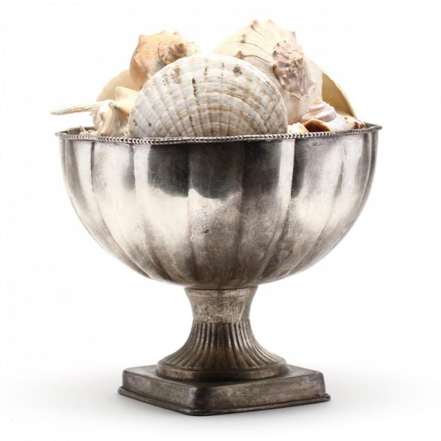 seashell-collection-displayed-in-a-pedestal-bowl