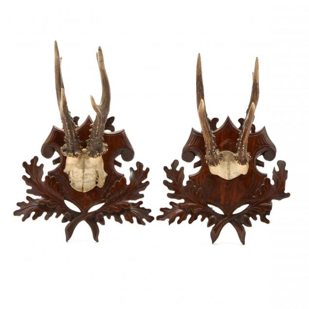 a-pair-of-antique-mounted-stag-horns