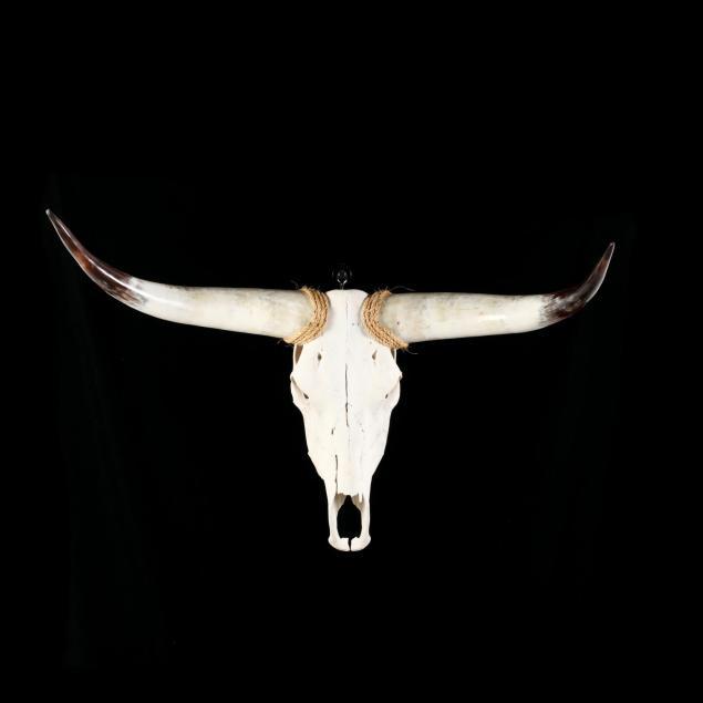 wall-mount-longhorn-steer-skull-and-horns