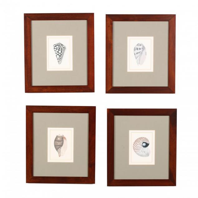 four-framed-seashell-prints-pottery-barn