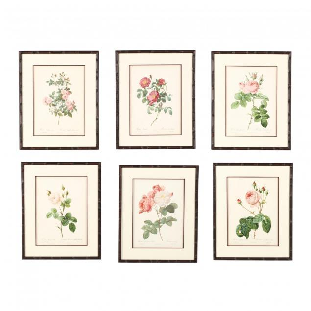 after-pierre-joseph-redoute-french-1759-1840-six-framed-botanical-prints-illustrating-roses