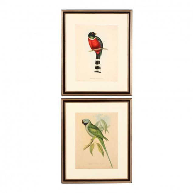 two-framed-contemporary-prints-after-john-gould-s-i-tropical-birds-i