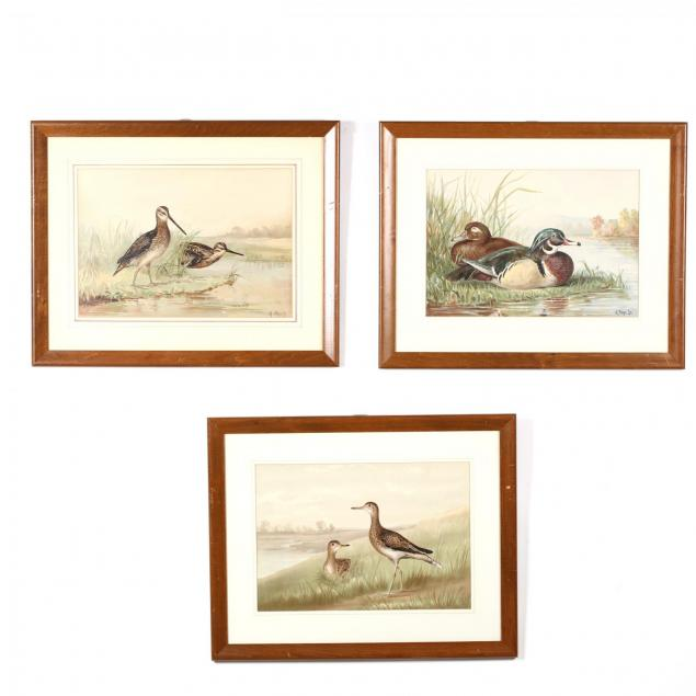 alexander-pope-jr-american-1849-1924-three-works-from-i-upland-game-birds-and-waterfowl-of-the-united-states-i