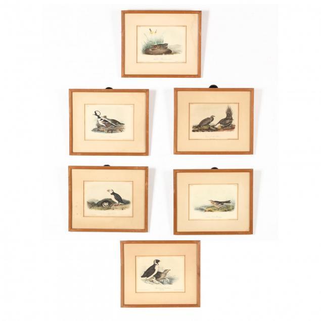 after-john-james-audubon-am-1785-1851-six-prints-from-i-birds-of-america-i