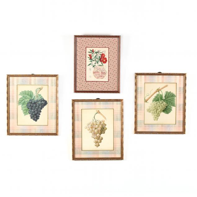 four-antique-fruit-engravings