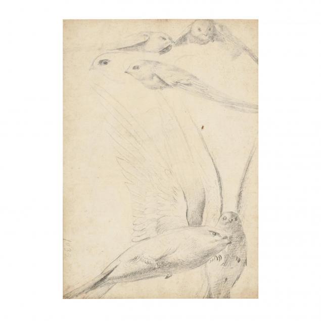 att-nicolas-robert-french-1614-1685-study-of-birds