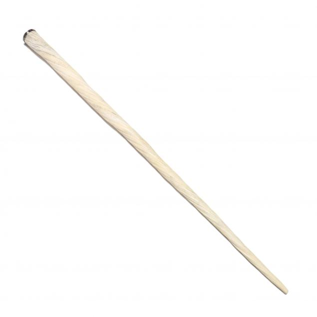 narwhal-tusk-silver-topped-cane