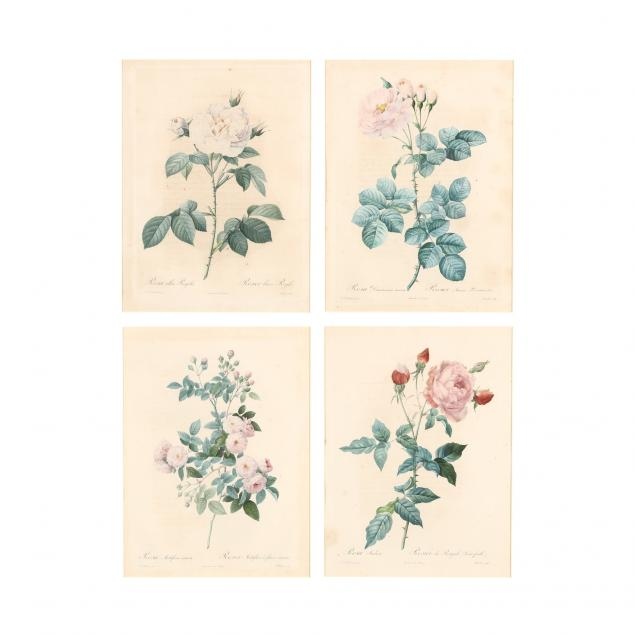 after-pierre-joseph-redoute-french-1759-1840-four-engravings-from-i-les-roses-i
