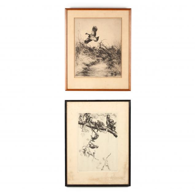 two-primate-and-ornithological-etchings
