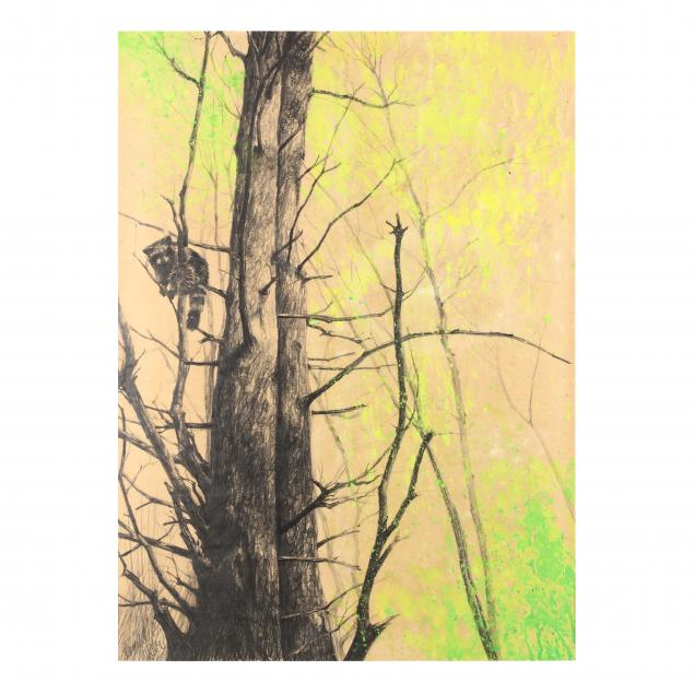 don-neiser-1918-2009-forest-view-with-raccoon