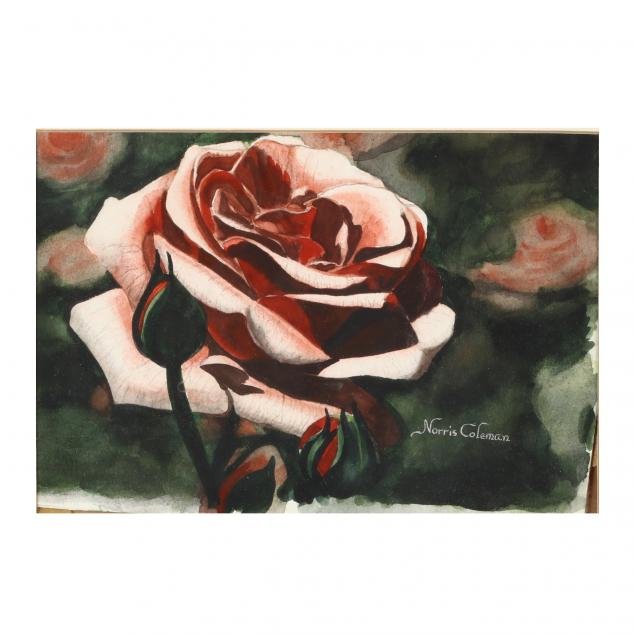 norris-coleman-va-rose