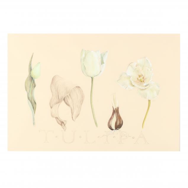 lynn-carden-oh-i-tulipa-i