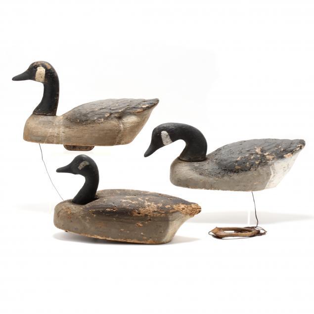 three-vintage-canada-goose-working-decoys