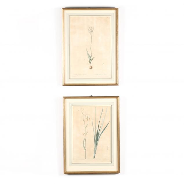 after-pierre-joseph-redoute-french-1759-1840-two-floral-engravings