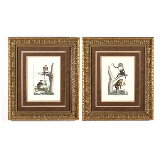 pair-of-framed-decorative-primate-prints