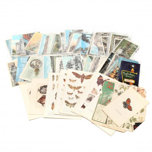 48-vintage-postcards-and-ten-natural-history-plates