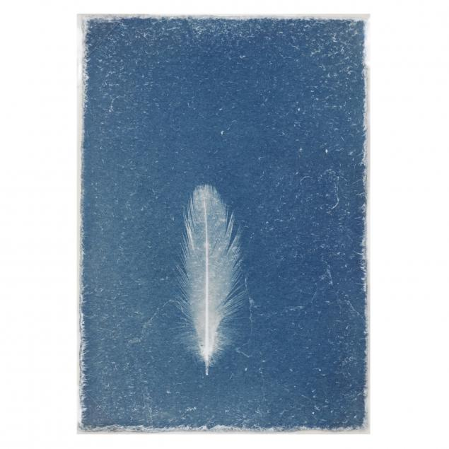 ken-rosenthal-az-i-untitled-i-from-i-feathers-i
