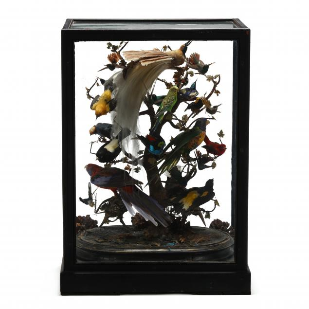 large-antique-exotic-bird-diorama-under-glass