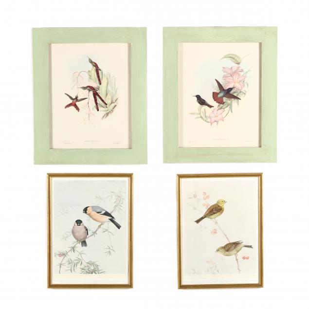 two-framed-pairs-of-ornithological-prints