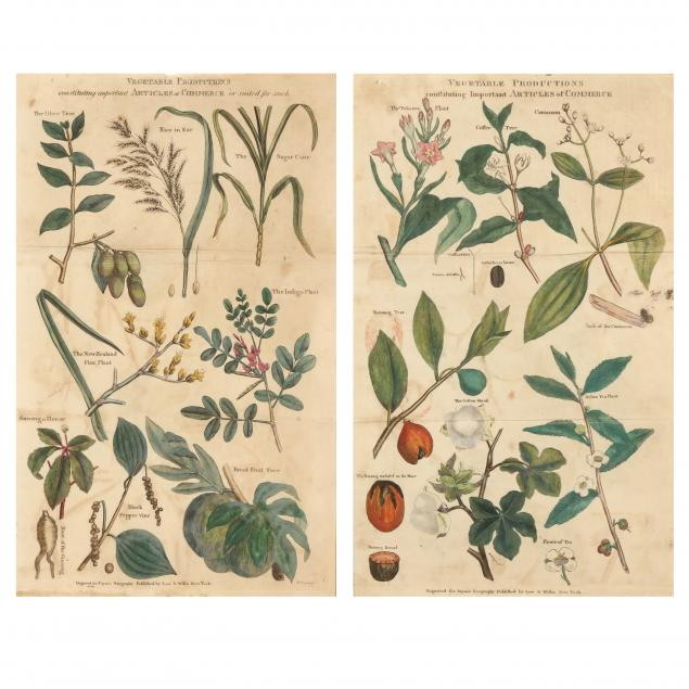 two-antique-vegetable-production-botanical-prints-from-i-payne-s-geography-i