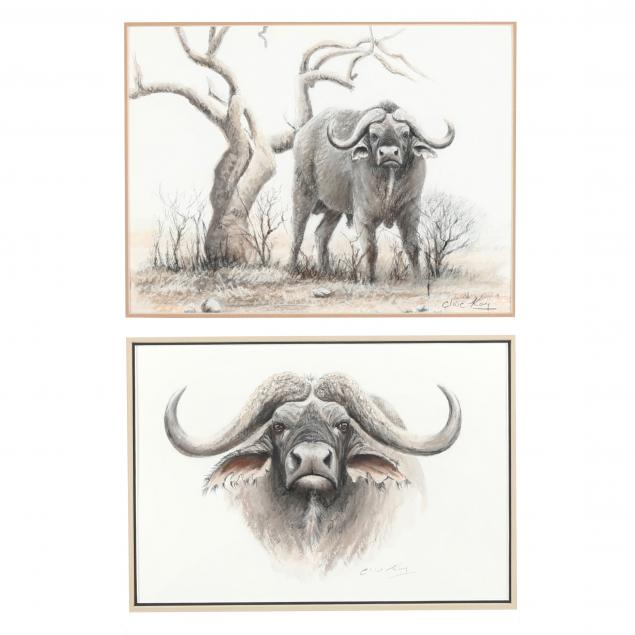 clive-kay-zimbabwean-canadian-born-1944-two-cape-buffalo-drawings