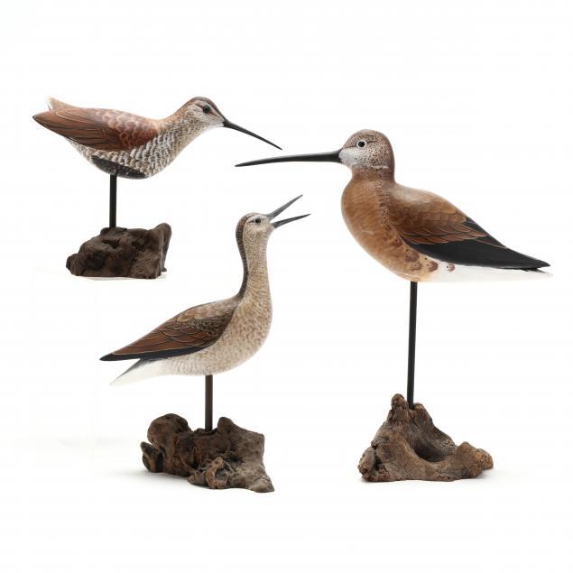 three-painted-shorebirds