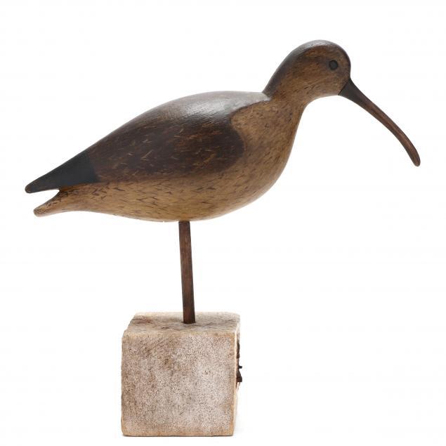 ian-mcnair-curlew